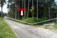 บ้านหลุดจำนอง ธ.ธนาคารทหารไทยธนชาต เชี่ยวเหลียง กะเปอร์ ระนอง